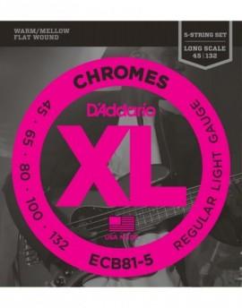 ECB81-5 Chromes Bass 5-String