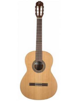 Guitarra JOSE TORRES JTC-5S